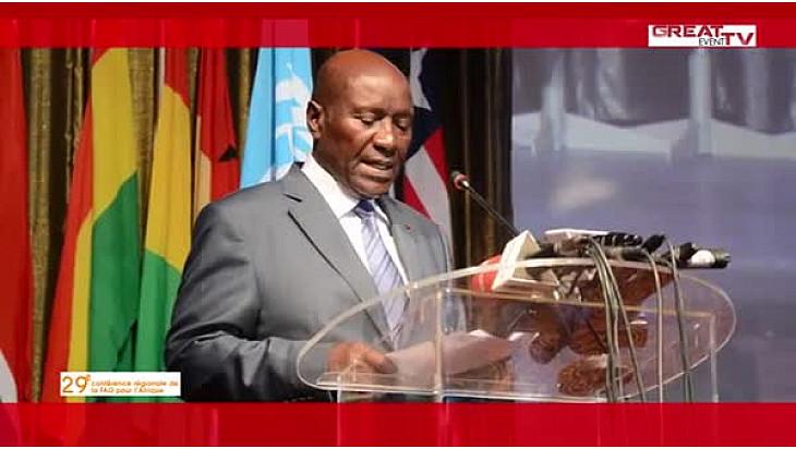 29ème Conférence régionale de la FAO pour l'Afrique