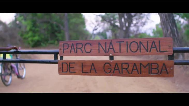 Le Parc National de la Garamba en RDC Célèbre un Tournant Décisif Plein d'Espoir